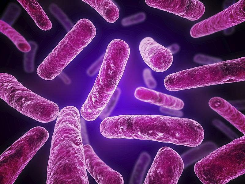 Микробиом. Токсины и бактерии кишечника