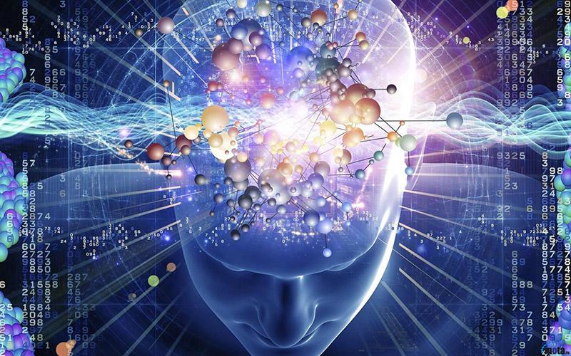 Зависимость интеллекта от привычек и образа жизни человека