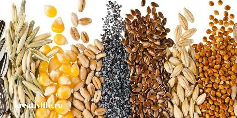 В каких продуктах питания содержится глютен