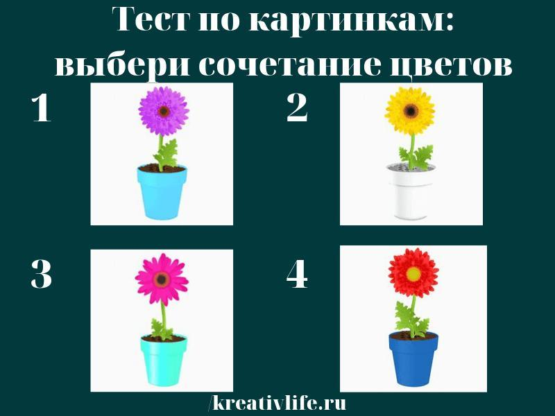 Тест по картинкам цвета, цветы